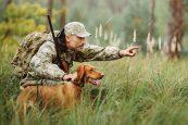 hunter&dog